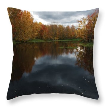 Beaver River Dramatic Throw Pillow