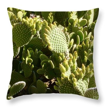 Beaver Tail Cactus, Cave Creek, Arizona Throw Pillow by Patricia E Sundik