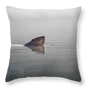 Beaver Tail Throw Pillow