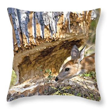 Beaver Wannabe Throw Pillow