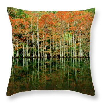 Beaver's Bend Cypress All In A Row Throw Pillow by Tamyra Ayles