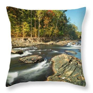 Beavers Bend II Throw Pillow
