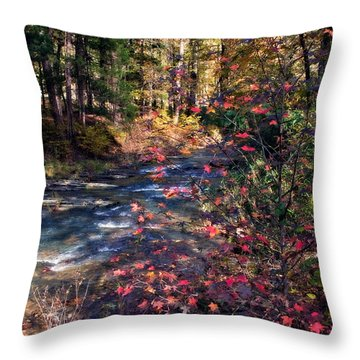 Beavers Bend Throw Pillow by Lana Trussell