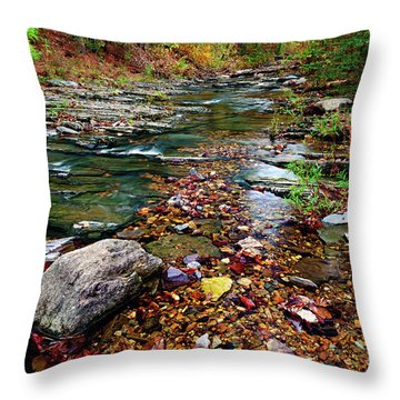 Beaver's Bend Tiny Stream Throw Pillow