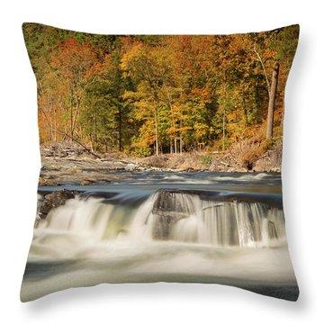 Beavers Bend Vi Throw Pillow
