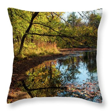 Throw Pillow featuring the photograph Beaver's Pond by Iris Greenwell