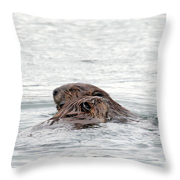 Beavers Snuggling Throw Pillow