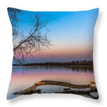 Beavers' Work Reflected Throw Pillow