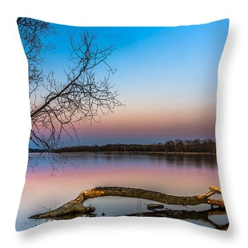 Throw Pillow featuring the photograph Beavers' Work Reflected by Julis Simo