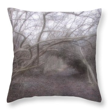 Beckoning Dream  Throw Pillow