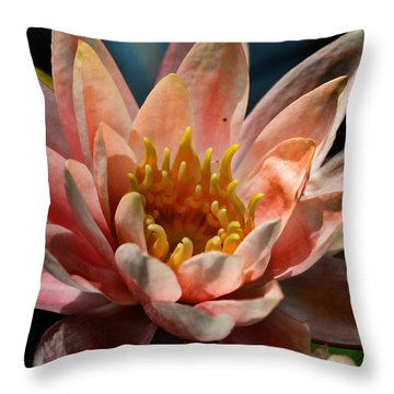 Beckoning The Sun Water Lily Throw Pillow