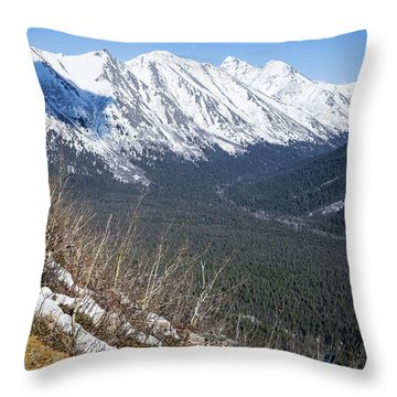 Beckoning Valley Throw Pillow