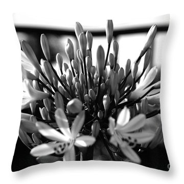 Becoming Beautiful - Bw Throw Pillow