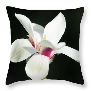 Becoming Throw Pillow by Cathy Donohoue
