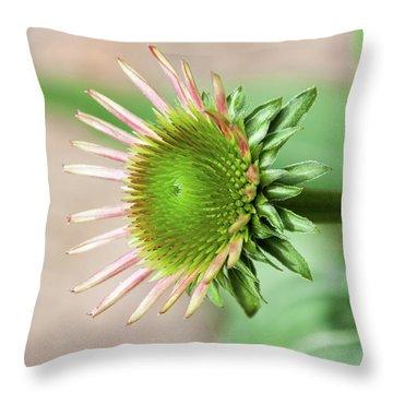 Becoming Echinacea - Throw Pillow