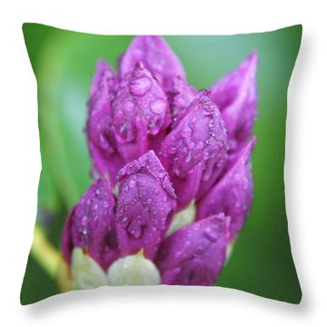 Throw Pillow featuring the photograph Bedazzled by Alex Grichenko