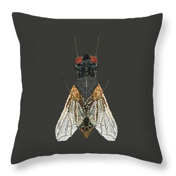 Bedazzled Housefly Transparent Background Throw Pillow