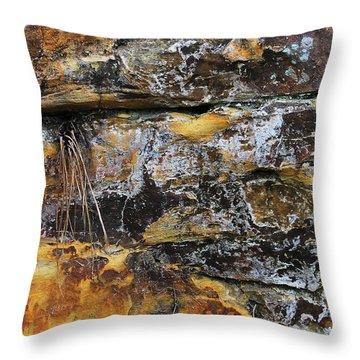 Bedrock Throw Pillow