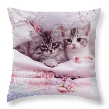 Bedtime Kitties Throw Pillow