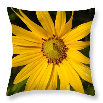 Bee And Yellow Flower Throw Pillow by Kent Lorentzen