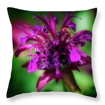 Throw Pillow featuring the photograph Bee Balm Beauty by Chrystal Mimbs