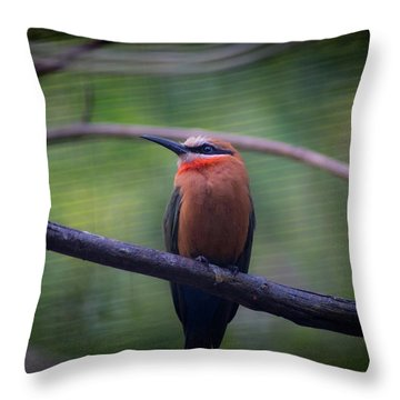 Bee-eater Throw Pillow