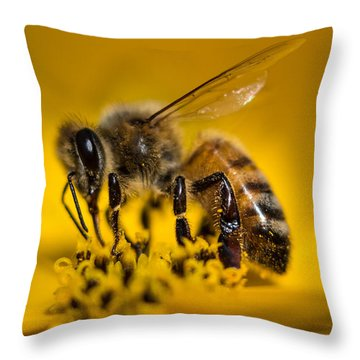 Bee Enjoys Collecting Pollen From Yellow Coreopsis Throw Pillow