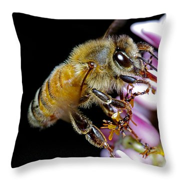 Bee Feeding Throw Pillow