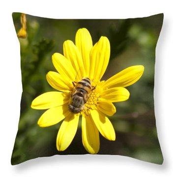 Bee Feeding Throw Pillow