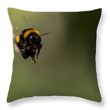 Bee Flying - View From Front Throw Pillow