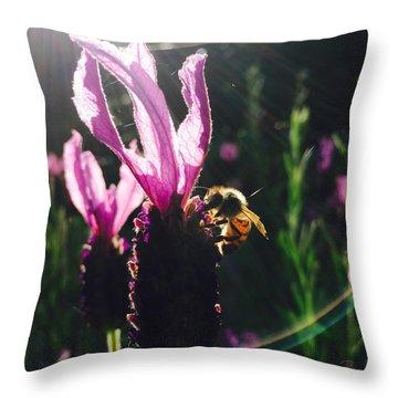 Bee Illuminated Throw Pillow