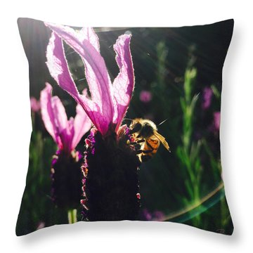 Bee Illuminated Throw Pillow