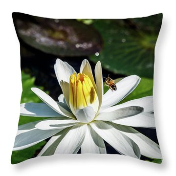 Bee In A Flower Throw Pillow