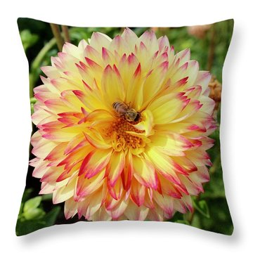 Bee In The Middle Throw Pillow