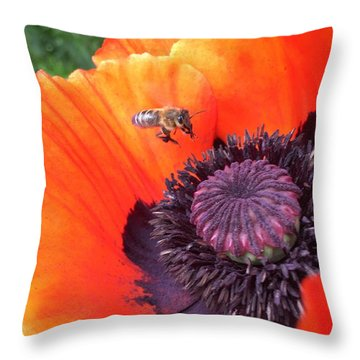 Bee Is Visiting A Poppy Throw Pillow