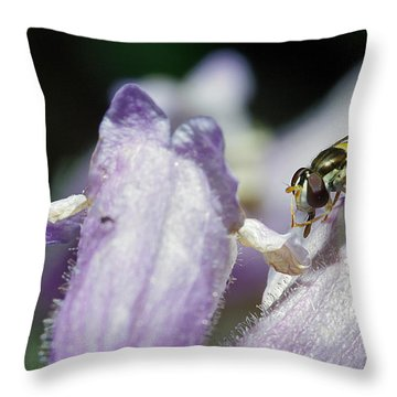 Bee Mimic On Iris Throw Pillow