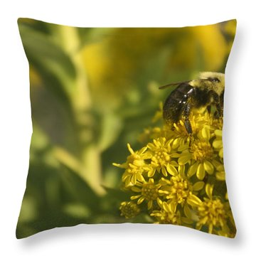 Bee Nom Nom Nom Throw Pillow by Kevin  Sherf
