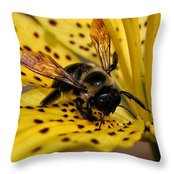 Throw Pillow featuring the photograph Bee On A Lily by William Selander