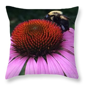 Bee On Flower By Saribelle Rodriguez Throw Pillow by Saribelle Rodriguez