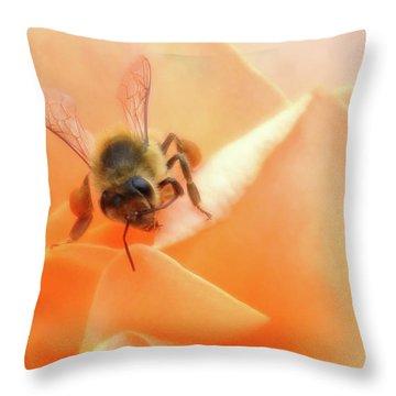 Bee On Flower Throw Pillow by Matthew Bamberg