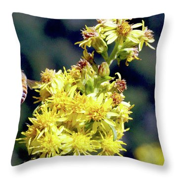 Bee On Goldenrod Throw Pillow
