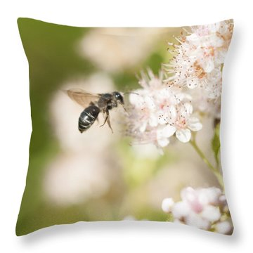 Bee On Pink Flowers Throw Pillow