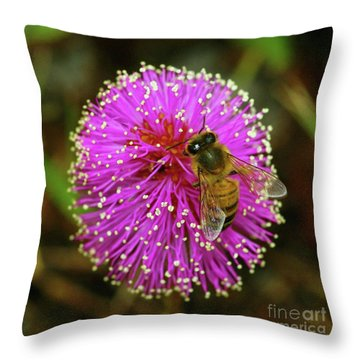 Bee On Puff Ball Throw Pillow