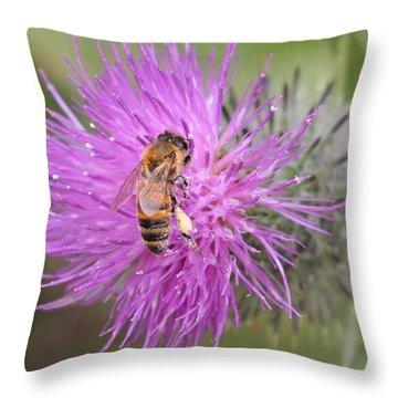 Bee On Purple Thistle Throw Pillow