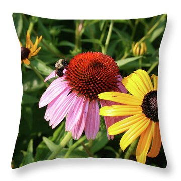 Bee On The Cone Flower Throw Pillow