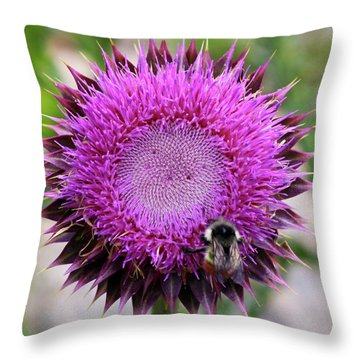 Throw Pillow featuring the photograph Bee On Thistle by David Chandler