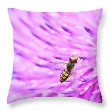 Sweat Bee On Thistle Throw Pillow
