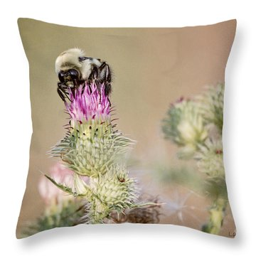 Bee On Thistle Weed Throw Pillow by Laurinda Bowling