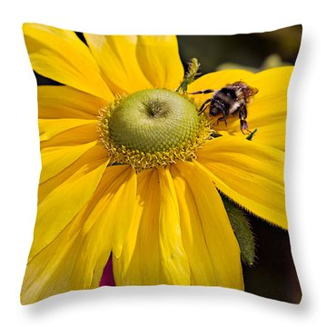 Throw Pillow featuring the photograph Bee On Yellow Cosmo by Peter J Sucy