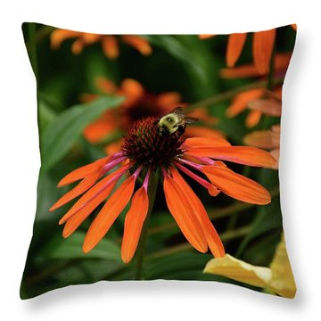 Bee Pollinating On A Cone Flower Throw Pillow